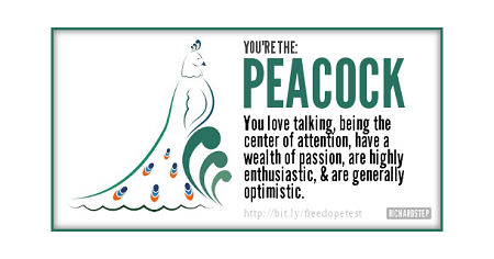 DOPE-Bird-Personality-Test-Results--PEACOCK-min